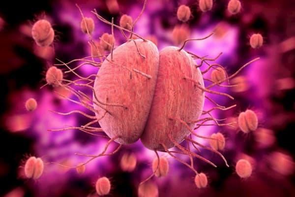 Bệnh lậu là gì? Dấu hiệu, nguyên nhân và cách chữa trị, kèm hình ảnh